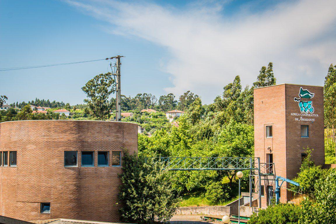 Amarante quer consolidar posição na região Vinhos Verdes