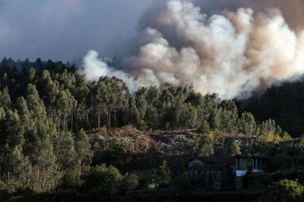 Mulher com depressão profunda ateou seis fogos em Baião