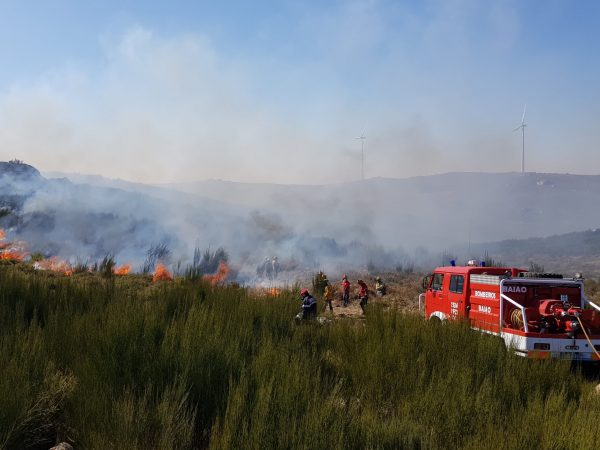 Aumenta fogo controlado na floresta baionense