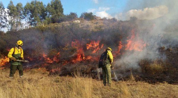 CIM do Tâmega e Sousa trabalha na prevenção de incêndios